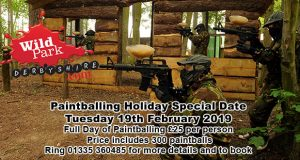 wpd-paintball-special-2019-02-19